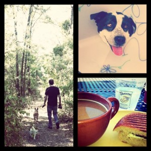 Hiking, Surgery Puppy & Panera